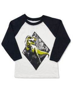 Youth T. Rex Diamond Raglan T-Shirt