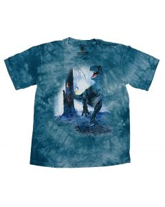 Youth Teal T. Rex Jungle Fire T-shirt