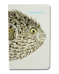Spot-Fin Porcupine Fish Journal