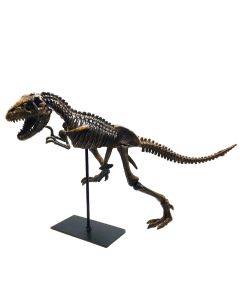 T. Rex Skeleton Model and Stand