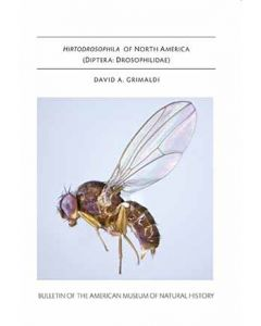 B421 (2018) Hirtodrosophila of North America