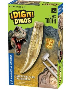 I Dig It! T. Rex Tooth Excavation Kit