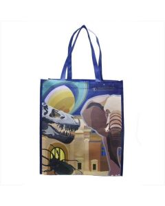 AMNH Icons Recycled Plastic Reusable Bag - Large